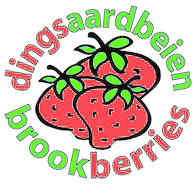 logo-dingsaardbeien-brookberries-1-