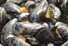 zeeuwse-mosselen-custom-